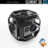 3D gopro omni element