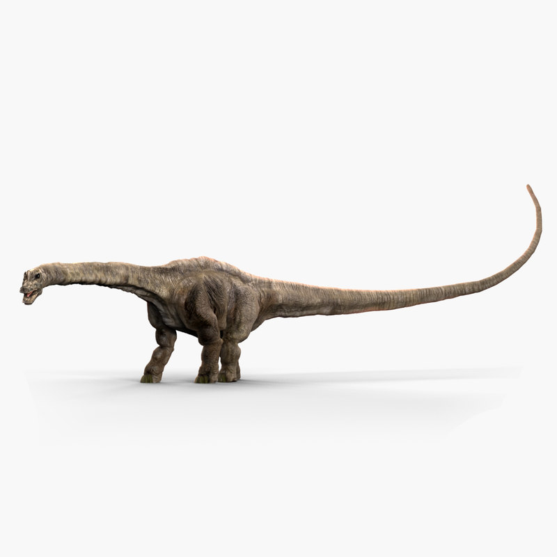 3D model diplodocus dinosaur animate