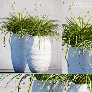 plant 100 3D model