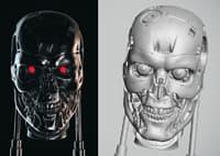 3D endo skull terminator model