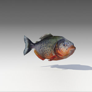 piranha animations 3D