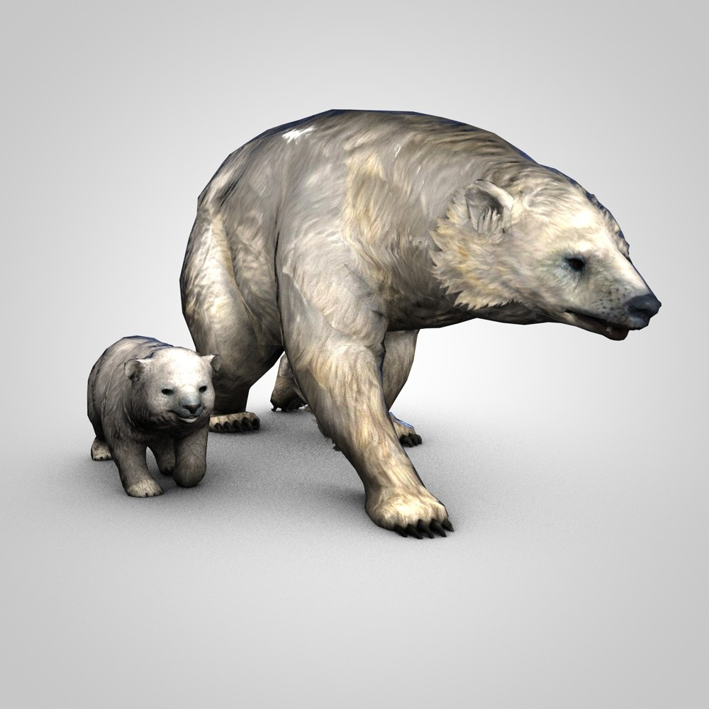 3D model polar bear rigged