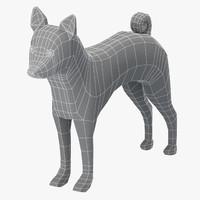base mesh basenji dog 3D model