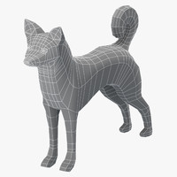 base mesh canaan dog model