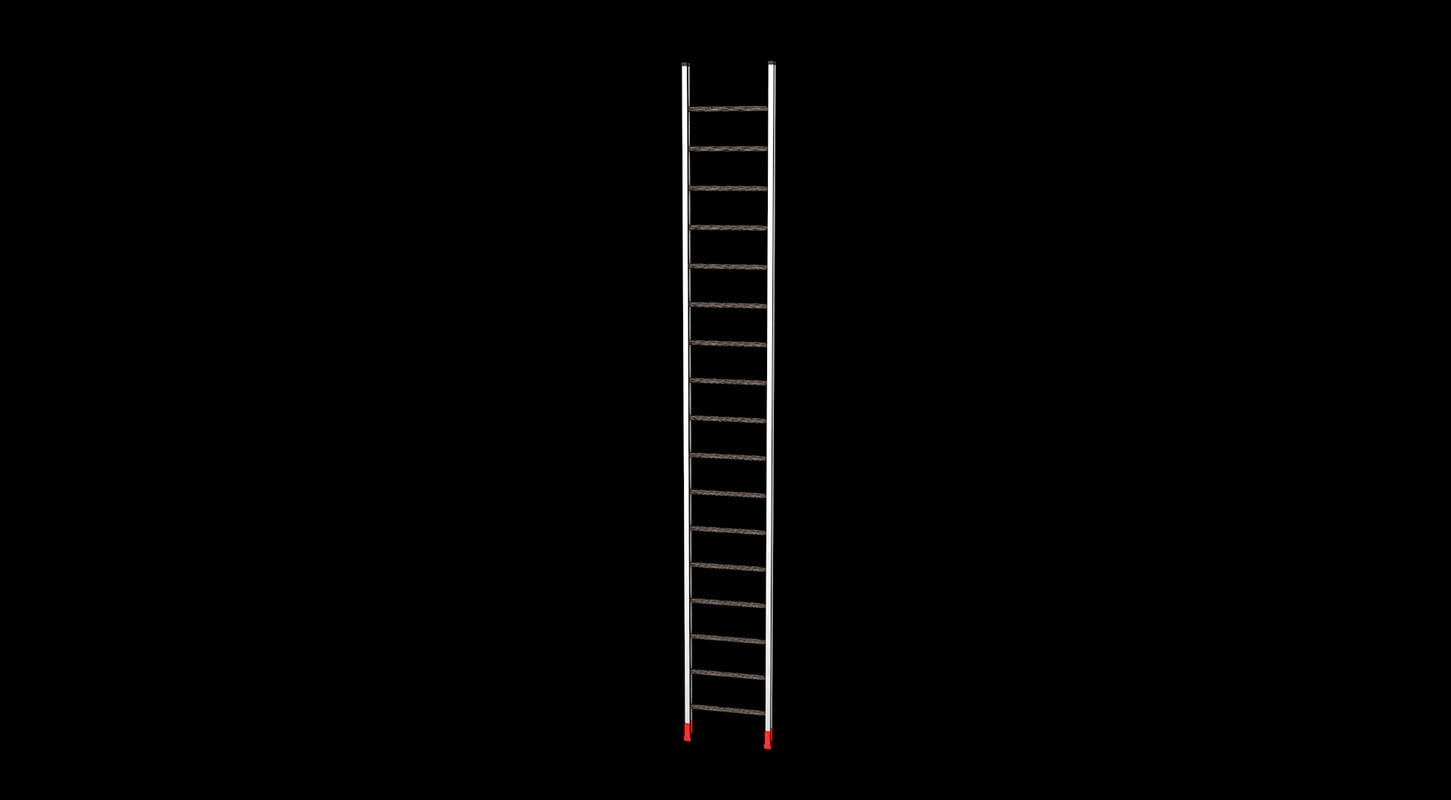 3D ladder