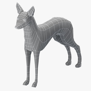 3D model base mesh pharaoh hound