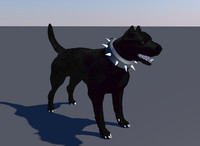 male pitbull bull dog 3D model