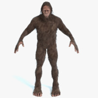 3D bigfoot big foot