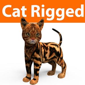 cute cat rigged 3D