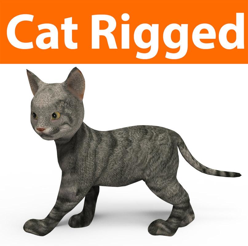 3D cute cat rigged model