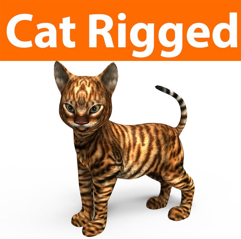 3D model cute cat rigged