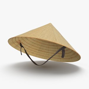 vietcong-rice-hat---on-head 3D model