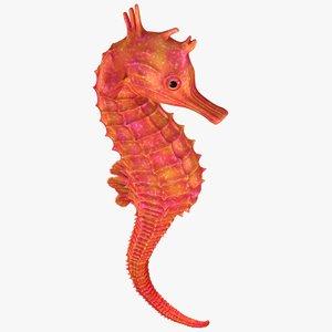3D realistic seahorse bones animation model