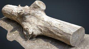 3D model dead trunk