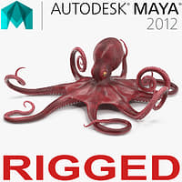 Octopus Vulgaris Rigged for Maya