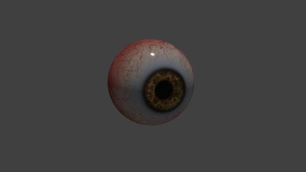 eye model