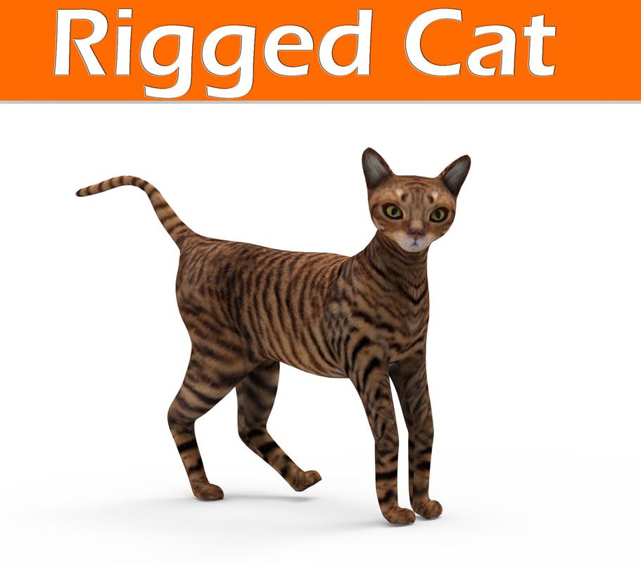 cat rigged 3D