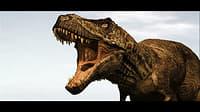 3D pack dinosaurios