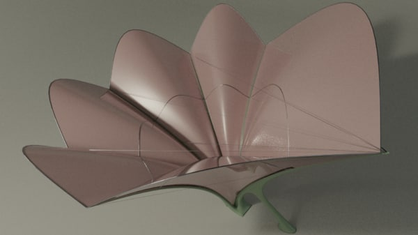 3D lily canopy model