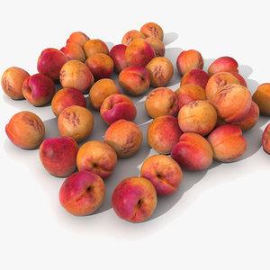apricot realistic model