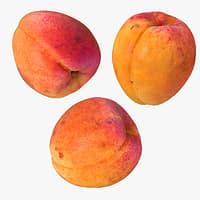 3 realistic apricots 3D