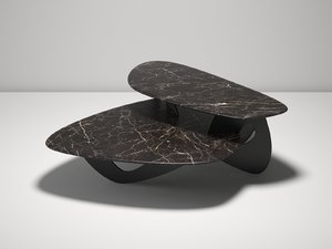 3D model tama