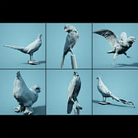 bird realistic faceted 3D model