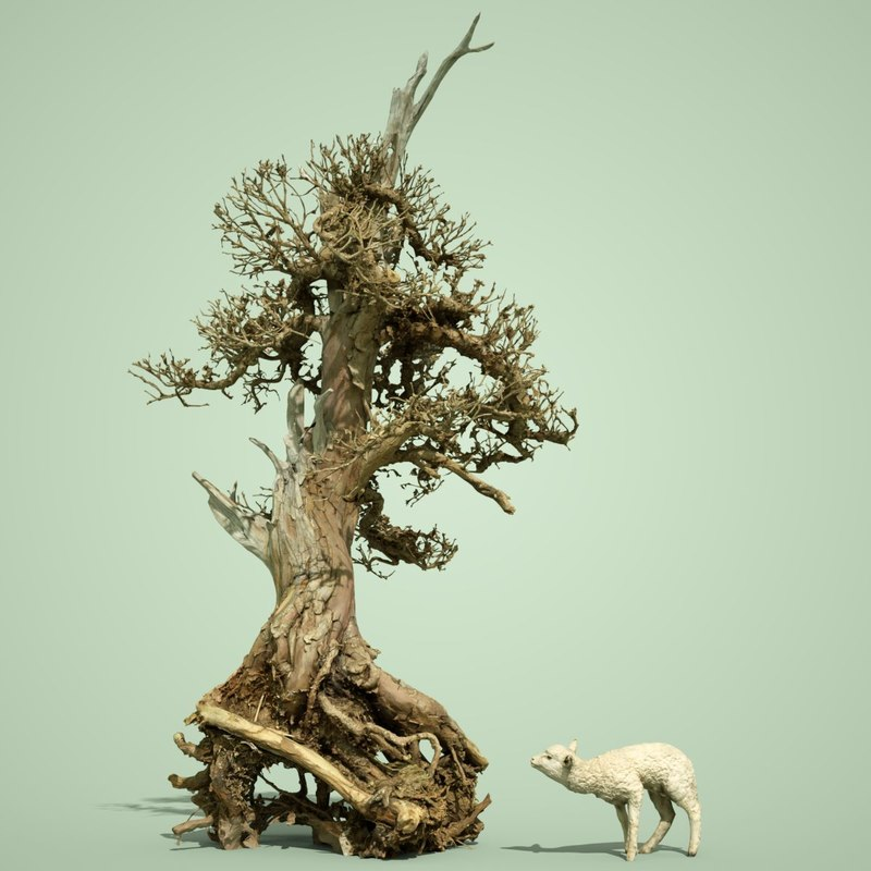 3D dead forest tree stylised