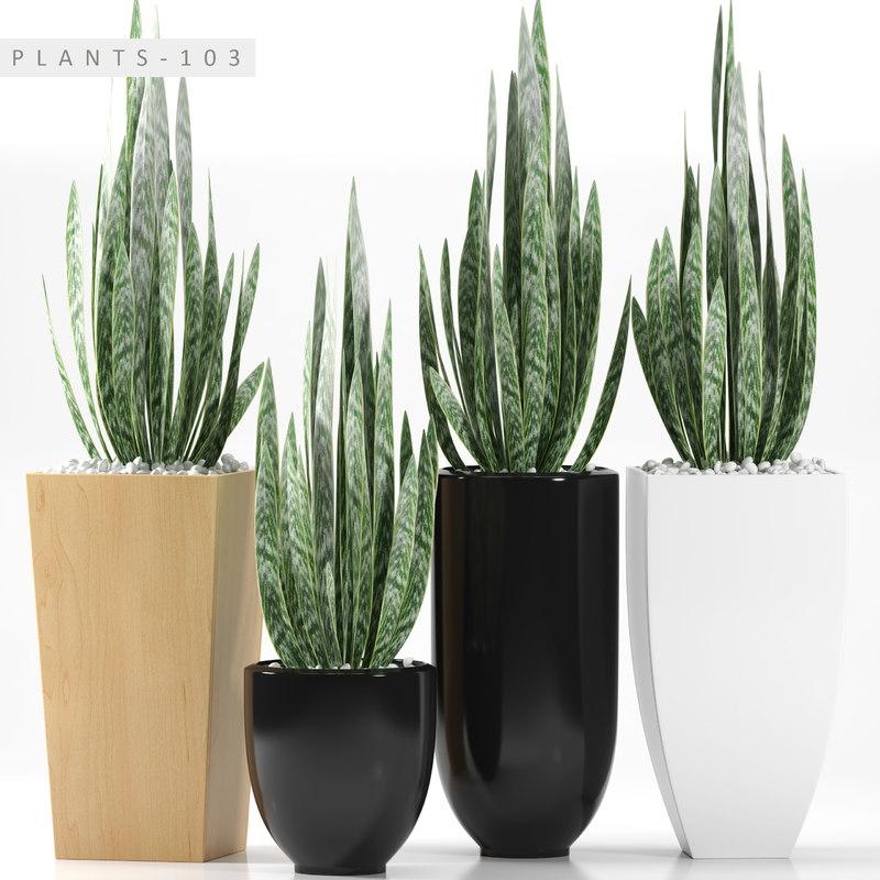 plant 103 3D