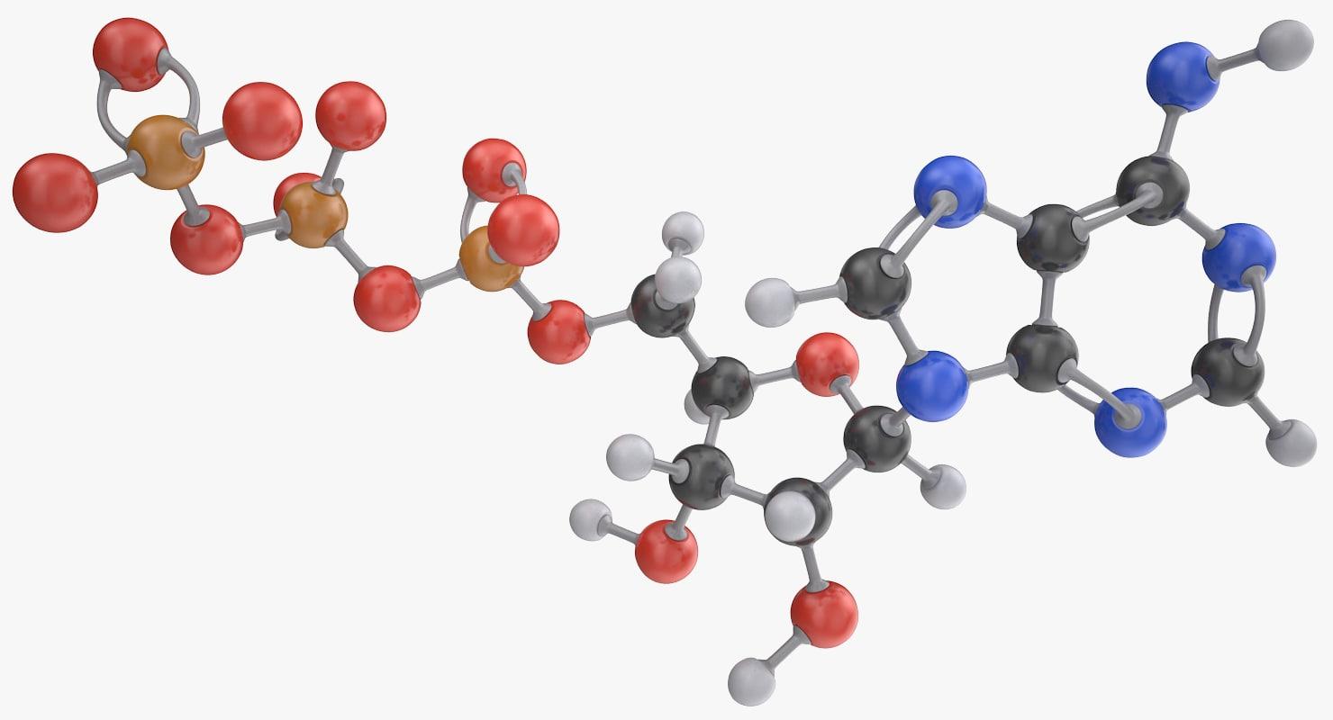 3D adenosine triphosphate molecule