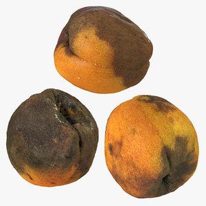 rotten apricots model
