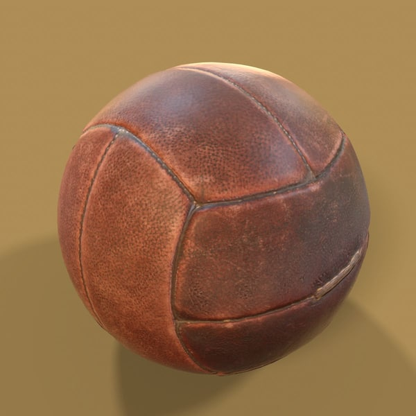 leather ball exercise 3D