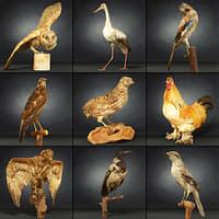 3D animal 9 model
