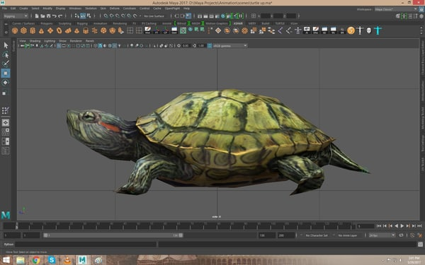 rigged turtle 3D model