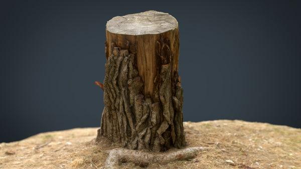 3D realistic tree stump