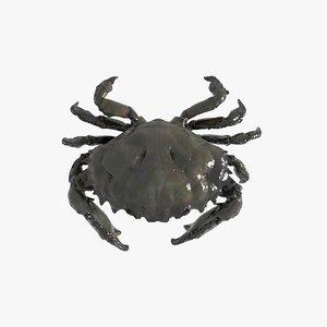 3D model crab pbr