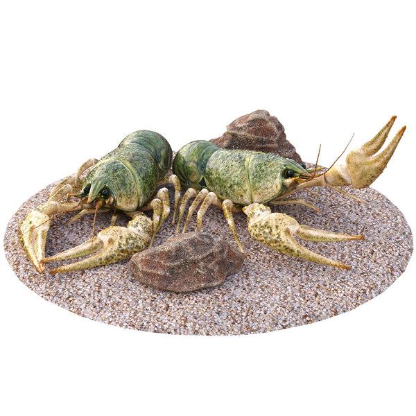 3D crawfishes stones model