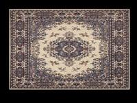 floor rug model
