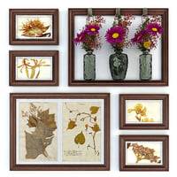Herbarium. Flowers in a Vase. Frame pictures
