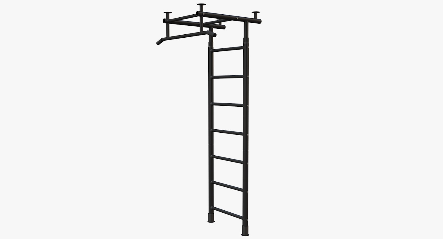 3D gym wall bars