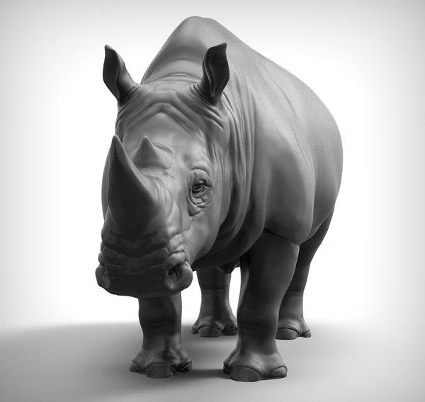 rhino ztl 3D model