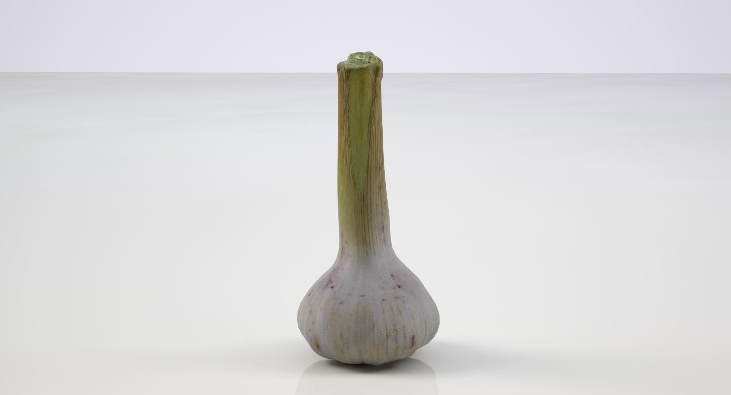 3D highres garlic tuber