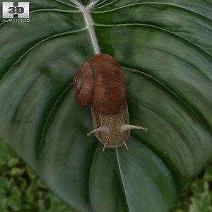 3D model snail