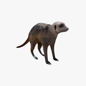 3D meerkat fur model