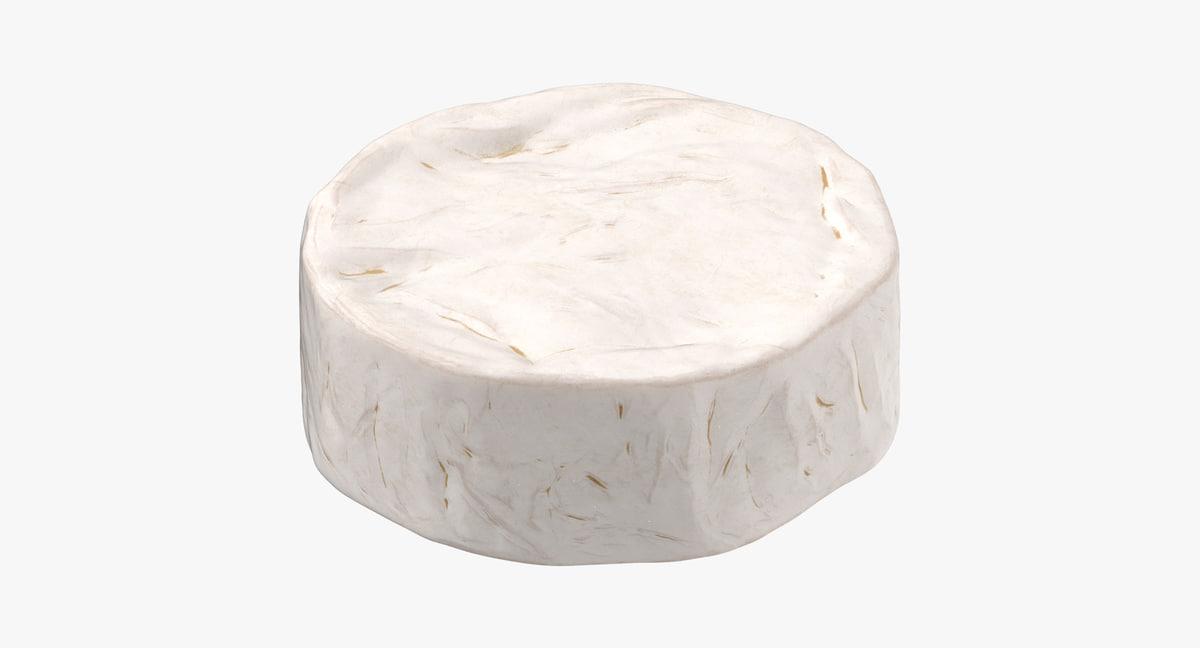 cheese brie wheel model