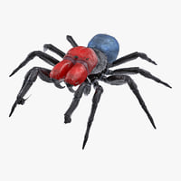 missulena occatoria spider fur 3D model