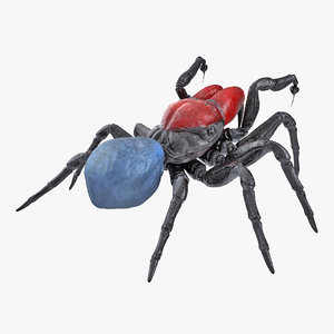 mouse spider fighting pose 3D model