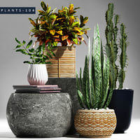 3D plants 104 set model