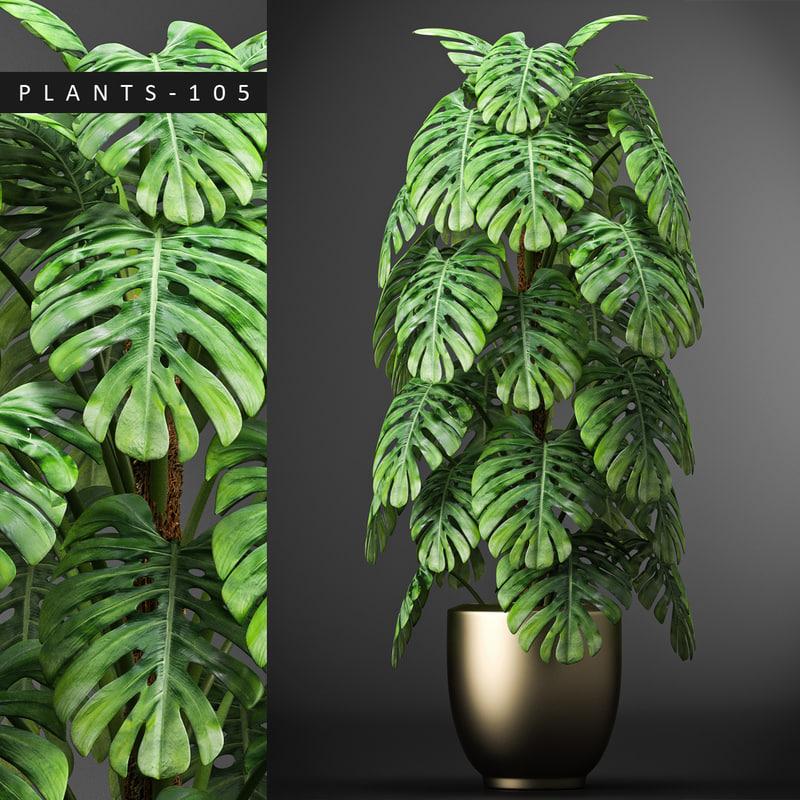 plants 105 model