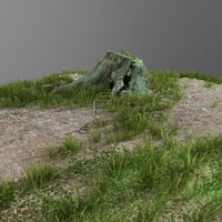 scanned tree stump gras 3D model